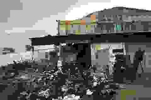 Sở GTVT TPHCM lên tiếng vụ cháy gần 3.000 thùng hồ sơ, tài liệu xe buýt