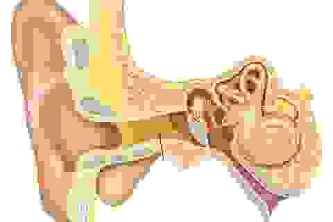 Đau nhói trong tai: Nguyên nhân và cách điều trị