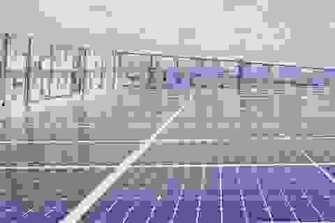 Tiết kiệm mỗi tháng gần 4 triệu đồng nhờ lắp điện mặt trời