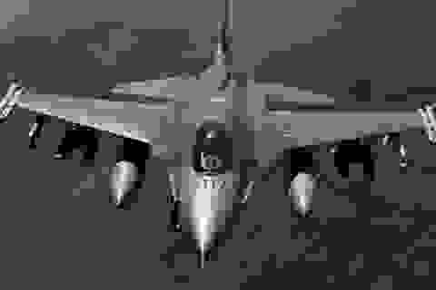 Mỹ bắt giữ công dân Nga vì mua sách hướng dẫn máy bay F-16 trên mạng