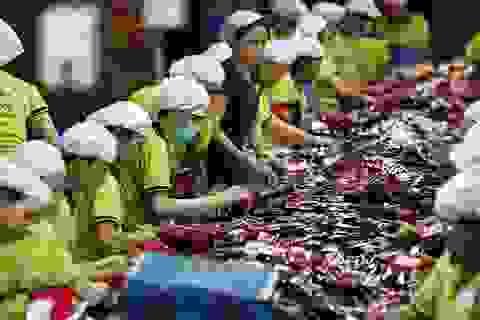 """""""Tận dụng tốt thời cơ, Việt Nam có thể trở thành công xưởng mới của thế giới"""""""