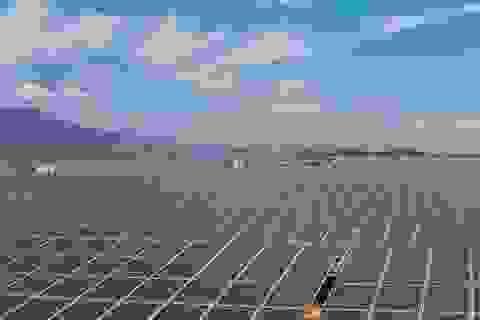 Năng lượng tái tạo: Bước đi vững chắc đối phó với biến đổi khí hậu