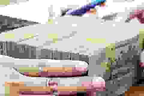 Kiểm toán Nhà nước vạch loạt bất cập trong giao vốn của Bộ Kế hoạch và Đầu tư