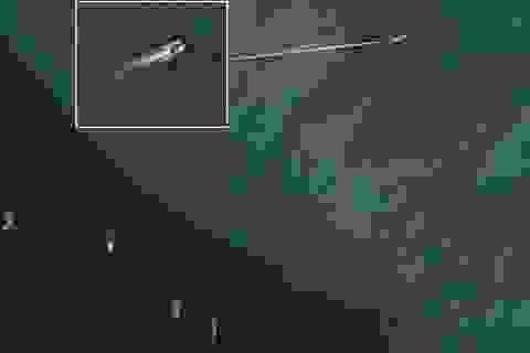 """""""Đội tàu hủy diệt"""" của Trung Quốc khai thác ồ ạt, tàn phá môi trường Biển Đông"""