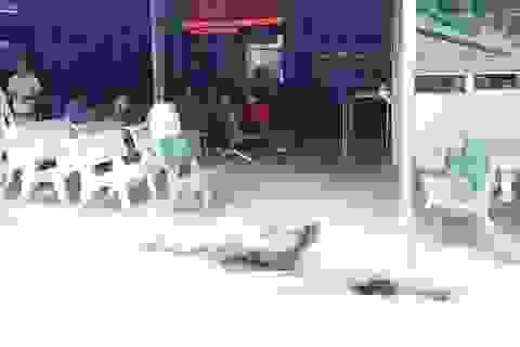 Lao vào bệnh viện đâm tình địch tử vong