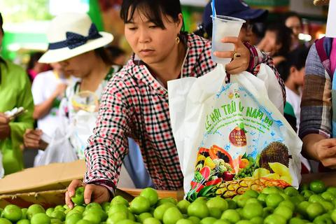 Thay túi nhựa bằng túi cói phục vụ du khách