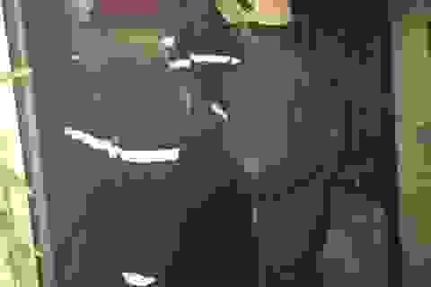 Giải cứu thành công bé trai 3 tuổi ngất lịm trong đám cháy