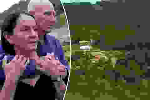 Đôi vợ chồng dành ra 20 năm để trồng hàng triệu cây xanh