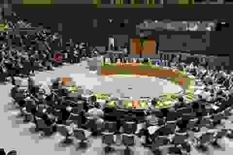 Hôm nay bầu Ủy viên không thường trực Hội đồng Bảo an: Việt Nam ứng cử