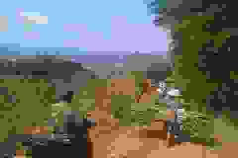 Không có biện pháp bảo vệ ngành mía đường, hàng triệu lao động, hộ dân có nguy cơ tái nghèo