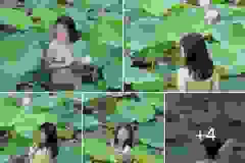 Đạo diễn tuyên bố cắt hết cảnh có diễn viên chụp ảnh khoả thân dưới hồ sen