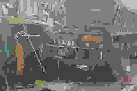 5 người nhập viện sau cú đâm cực mạnh của xe khách vào xe tải