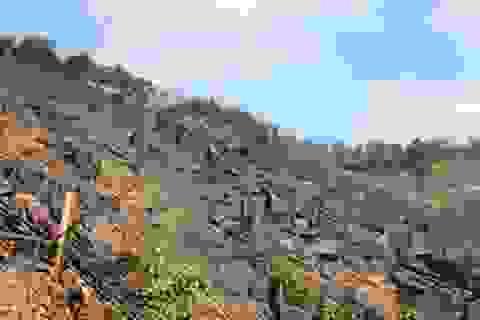 3 bố con bị khởi tố vì chặt phá tới hơn 30.000 m2 rừng phòng hộ để trồng keo