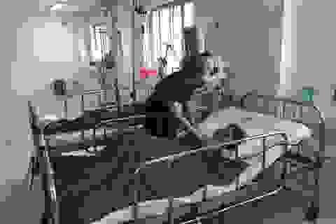 Cứu sống bệnh nhân quốc tịch Campuchia bị xuất huyết đa cơ quan rất nặng