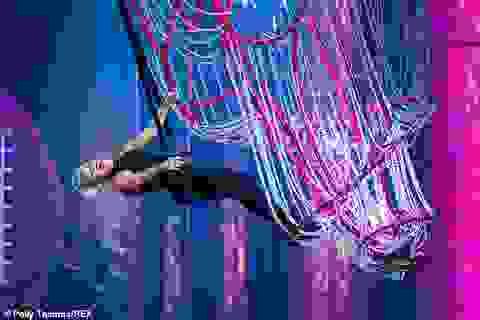 Pink gây choáng khi treo mình trên đèn chùm trình diễn