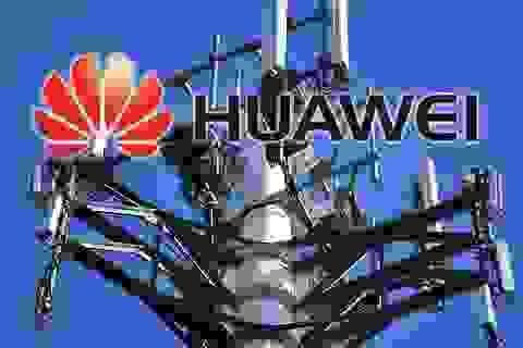 """Mỹ phải """"trả"""" 1 tỷ USD để """"loại bỏ"""" Huawei"""