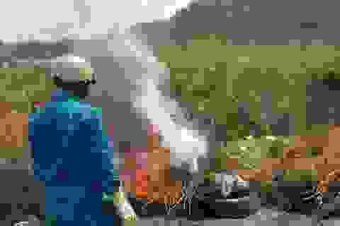 Phát hiện ổ dịch tả lợn Châu Phi tại Lâm Đồng