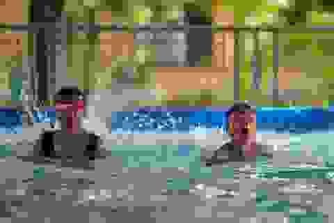 Quảng Ninh: Đưa vào sử dụng 21 bể bơi di động thông minh miễn phí cho trẻ em