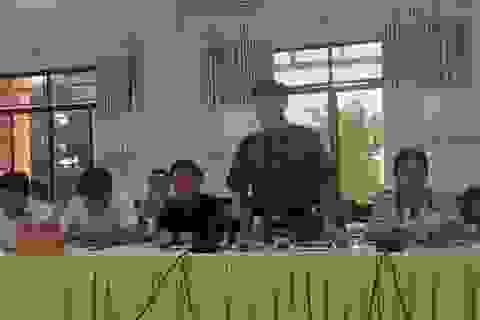 Họp báo vụ hơn 209ha đất bị lấn chiếm tại Kon Tum