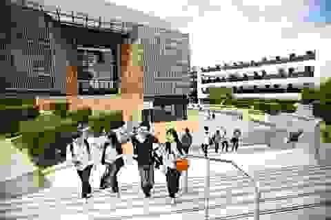 Học bổng, chính sách visa làm việc mới cho sinh viên du học Úc