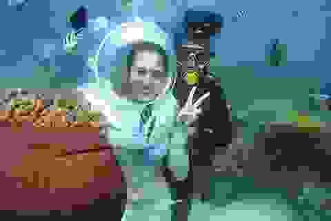 Đi bộ dưới đáy biển ngắm nhìn san hô