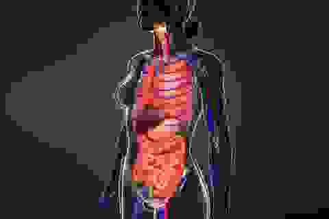 Ba dấu hiệu cho thấy gan đang mắc phải vấn đề nghiêm trọng