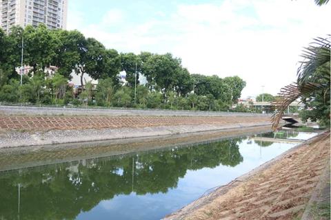 Bờ kè sông Tô Lịch được phủ xanh bằng cỏ lá tre