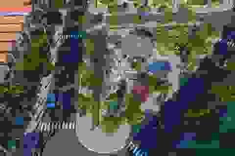 Bảo Lộc Golden City – Thế mạnh pháp lý và cơ hội lớn cho nhà đầu tư