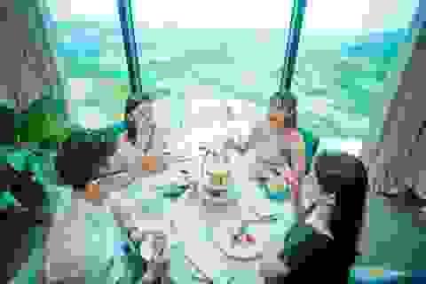 """Thú vui """"sang chảnh"""" mới ở Hạ long: Thưởng trà từ độ cao 100m"""