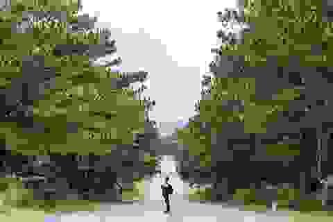 """Phượt thủ Hà Nội gây """"sốt"""" bởi bộ ảnh tuyệt đẹp dọc miền đất nước"""