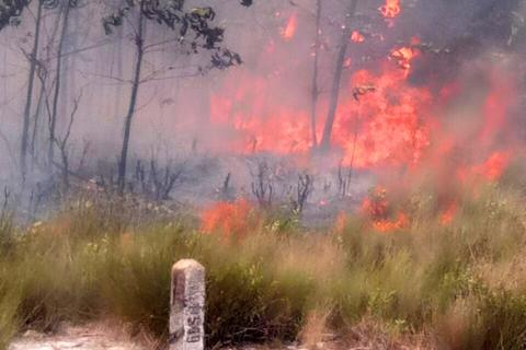Cháy rừng lớn uy hiếp đường sắt Bắc - Nam