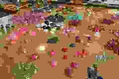 Nhóm người bất ngờ ôm trọn 3,5 tỷ đồng từ một viên đá thô xù xì