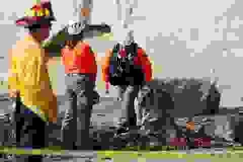 Mừng người thân thoát khỏi ung thư, 3 phụ nữ trong một gia đình thiệt mạng vì vách đá đổ sập