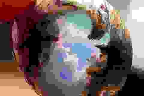 """Cần gì phải lên tận cung trăng khi ngay tại Trái Đất đã có vô vàn điều """"ảo diệu"""""""