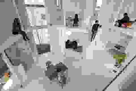 """Không gian sống tuyệt đẹp tái định nghĩa """"kiến trúc container"""" của người Nhật"""