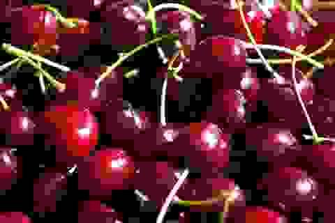 Cherry Mỹ siêu rẻ nhập ồ ạt vào Việt Nam, giá chỉ 209.000 đồng/kg