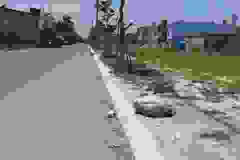 Đà Nẵng quy định giá đất ở tái định cư tại một số dự án trên địa bàn