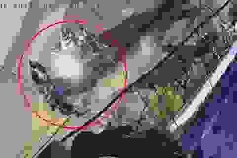 Xôn xao clip 2 thanh niên uy hiếp cô gái cướp tài sản trong đêm ở Sài Gòn