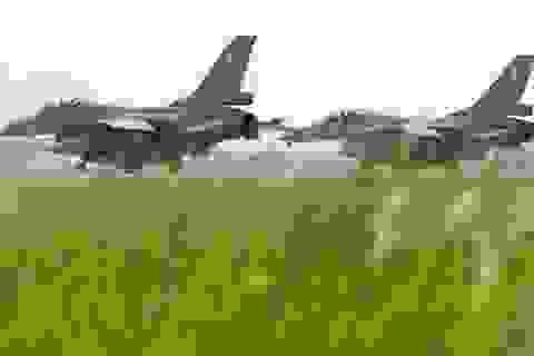 Bộ Ngoại giao Mỹ đồng ý bán 66 máy bay F-16 giá 8 tỷ USD cho Đài Loan