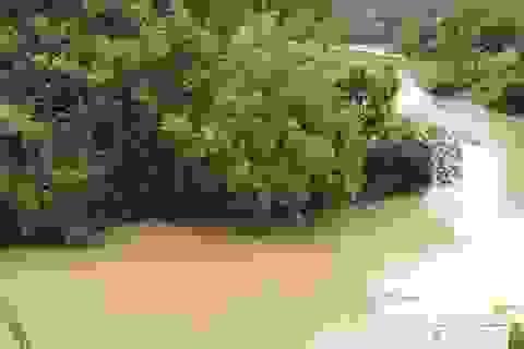 Đi qua đập tràn khi nước lớn, 1 người bị cuốn trôi