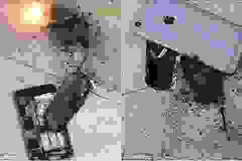 """Mua Galaxy S10+ """"chính hãng"""" giá 4 triệu đồng rồi ôm hận"""