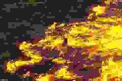 """Bức ảnh phản ánh tình trạng hỏa hoạn khủng khiếp tàn phá """"lá phổi xanh"""" Amazon"""