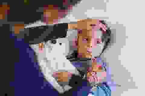 Khoa học cùng với bé: Bạch cầu trong máu giúp chúng ta chống lại bệnh tật như thế nào?