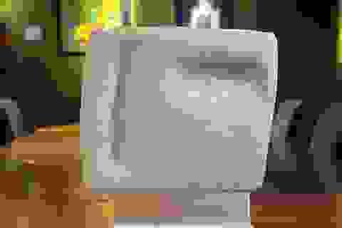 Bức tượng vô giá trị hóa ra là tác phẩm nghệ thuật có giá hơn 14 tỷ đồng