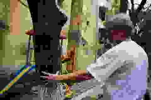 """Cả khu dân cư Hà Nội cứu 3 cây sưa quý nghi bị """"bỏ độc"""""""