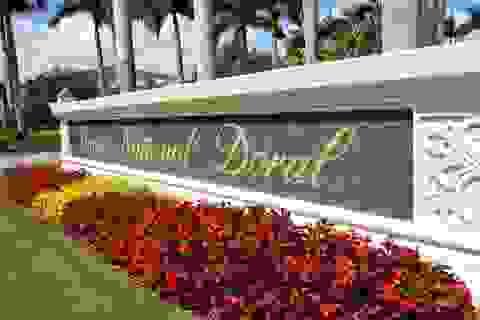Rộ tin đồn khu nghỉ dưỡng của tập đoàn Trump có rệp hút máu