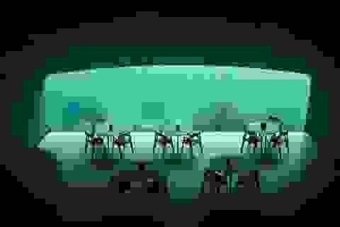 Bên trong nhà hàng dưới nước lớn nhất thế giới ở Na Uy