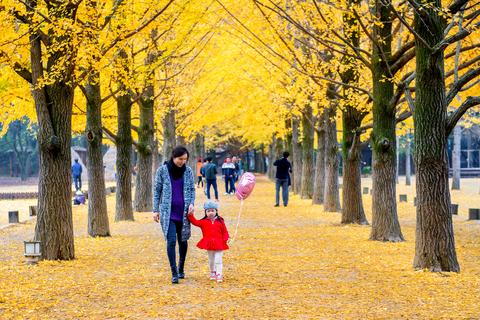 Những điểm hẹn lý tưởng cho người yêu mùa thu