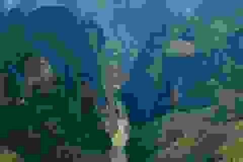 Sửng sốt trước vẻ đẹp của hẻm vực sâu nhất Đông Nam Á ở Hà Giang