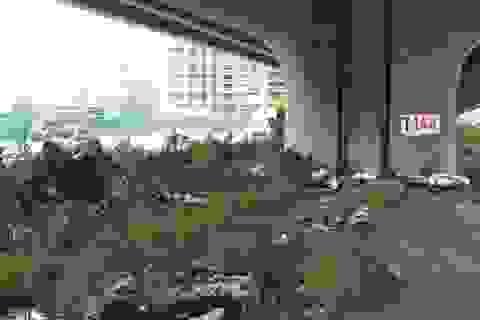 Hà Nội: Dải phân cách dưới đường trên cao nhếch nhác, đầy rác thải
